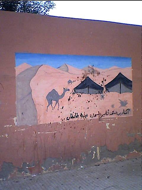 3-kamelvagg-laayoune.jpg